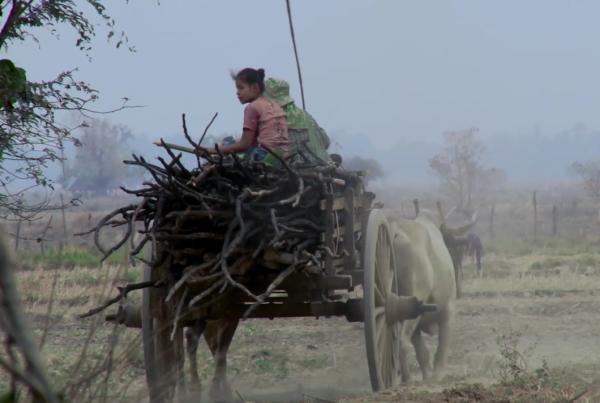 Ruutukaappaus, lapsia härkävankkurissa